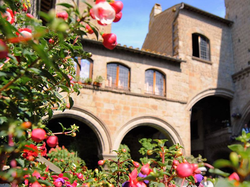Flower shows in Viterbo